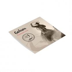 Pochette CD Carton