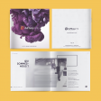Brochures point métallique